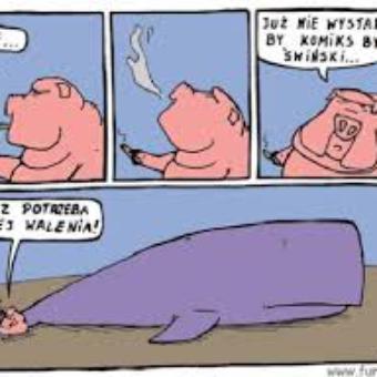 Świński komiks